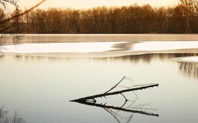 Karpervissen in de winter, horror of uitdaging?
