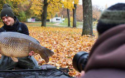 Karpers fotograferen; hoe maak je de perfecte foto?