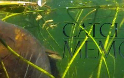 Catch Your Memories 2 – Prachtige video over karpervissen
