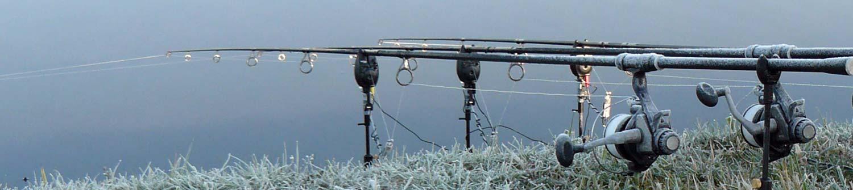 karpervissen in de winter